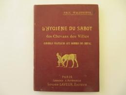 L'Hygiène Du Sabot Des Chevaux Des Villes - Paul WALDTEUFEL, Dédicace, 27 Figures Par MICH - 70 Pages - Animali