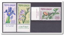 Marokko 1965, Postfris MNH, Flowers, Orchids - Marokko (1956-...)