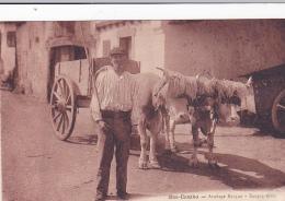 Cpa-64-bas Cambo-personnage -attelage Basque-edi Godard - France