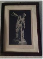 """STAMPA PRIMI '900 - Da Quadro Con Fotoincisione """" Boscaiuola """" Di Pierre Braecke  - In Cornice D'epoca - Prints & Engravings"""