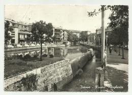 TREVISO RIVIERA MARGHERITA VIAGGIATA FG - Treviso