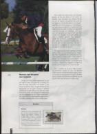 Belgie Herdenkingskaart Uit Jaarboek 2002 3084/85 BL95 Horses - Cartes Souvenir