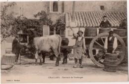 Challans Souvenir D Vendanges Attelage Vignerons - Nouvelle Calédonie