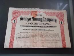 THE ARNOYA MINING COMPANY (1909) - Actions & Titres