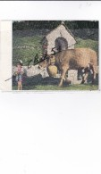 Liechtenstein ;Alpabfahrt -Cow Festival -Descente Des Vaches(Vache Décorée Accompagnée D'une Jolie Filllette - Liechtenstein