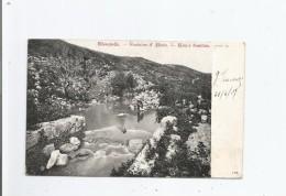 ELISAQUELLE FONTAINE D'ELISEE ELISA'S FOUNTAIN (JERICHO) 104     1907 - Palästina