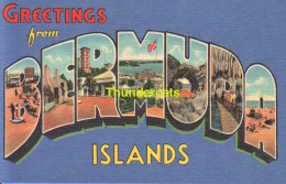 CPSM GREETINGS FROM  BERMUDA ISLANDS - Bermuda