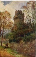 SALMON ART - QUATREMAIN 692 - CAESAR TOWER, WARWICK CASTLE - Warwick