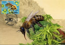 FRANCE (2016). Carte Maximum Card - Les Abeilles Solitaires, Collète -Bourges, Premier Jour (abeja, Abeille, Bee, Biene) - Abeilles