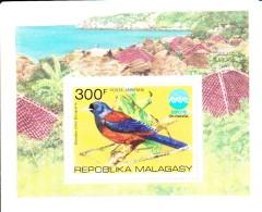 Madagascar MNH Scott #C146 Souvenir Sheet 300fr Jay - EXPO 75 Okinawa - Madagascar (1960-...)