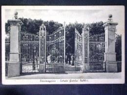 PUGLIA -FOGGIA -TORREMAGGIORE -F.P. LOTTO N°524 - Foggia
