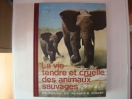 La Vie Tendre Et Cruelle Des Animaux Sauvages (édition Readers Digest) - Encyclopédies