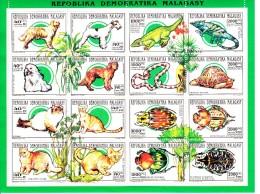 Madagascar MNH Scott #1160a Miniature Sheet Of 16 Different Fauna: Dogs, Cats, Reptiles, Beetles - Madagascar (1960-...)