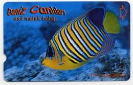 Poisson Fisch Fish Pez Pesce Télécarte Phonecard  Telefonkarte W80 - Turkey