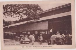 MADAGASCAR,MALAGASY,malgache,MAJUNGA,1900,marché,éleveur,fermier - Madagascar