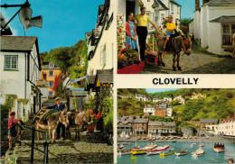 CLOVELLY    VIEWS      (NUOVA) - Clovelly