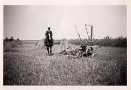 Photo Originale Ferme - Matériel Agricole Pour Ce Cavalier Farmer - Fermier - Foins - Visite De Champ En 1941 - Métiers