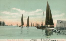 GB EYEMOUTH / Fishing Boats At Eyemouth / CARTE COULEUR - Berwickshire