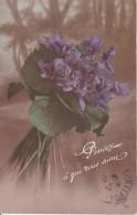 AK Veilchen  - 1916 (22957) - Blumen