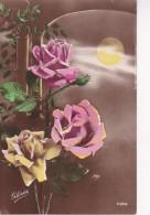 AK Rosen Und Mond - Ca. 1910 (22965) - Blumen