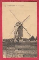 Oostrozebeke -  De Koornwindmolen ( Verso Zien ) - Oostrozebeke