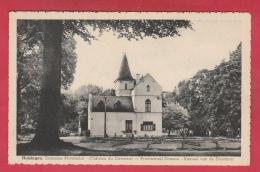 Huizingen - Provinciaal Domein - Kasteel Van De Directeur - 1965 ( Verso Zien ) - Beersel