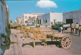 AFRIQUE---DJIBOUTI---une Rue--voir 2 Scans - Gibuti
