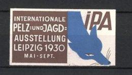 Carte Publicitaire Gaufrée Leipzig, Internationale Pelz-und Jagd-exposition 1930, Fuchs - Erinnofilia