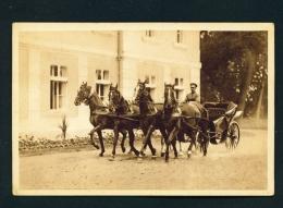 POLAND  -  Warsaw  Kopernika 30  Horse And Carriage  Unused Postcard - Poland