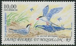 Saint -Pierre & Miquelon 1995. Michel #692 MNH/Luxe. Migratory Birds. (Ts17) - Vögel