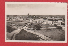 Ghardaia -- Mzab  --  Vue Générale - Ghardaia