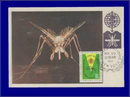 Nations Unies, Carte Maximum, Yvert 99, Moustique - Stamps
