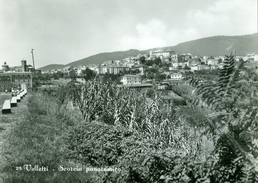 Velletri. Scorcio Panoramico. 134 - Velletri