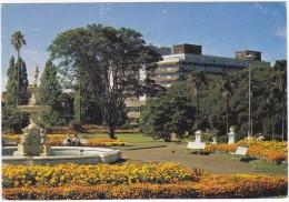 Auckland - Fountain, Albert Park - University  - New Zealand - Nieuw-Zeeland