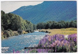 Cascade Creek, Eglinton Valley   - New Zealand - Nieuw-Zeeland