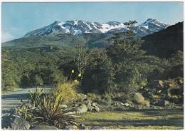 Mount Ruapehu From The Chateau, Tongariro National Park  - New Zealand - Nieuw-Zeeland