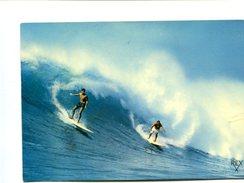 Cp - SURF - Cartes Postales