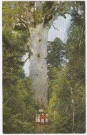 Tane Mahuta, Waipoua Forest, Northland  - New Zealand - Nieuw-Zeeland