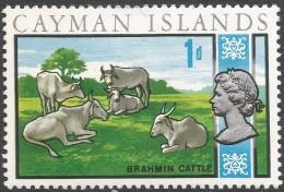 Cayman Islands. 1969 Definitives. 1d MH. SG 223 - Cayman Islands