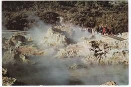 Hell's Gate , At Tikitere, Roturua   - New Zealand - Nieuw-Zeeland
