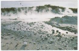 Hell's Gate Pool, Tikitere, Rotorua - New Zealand - Nieuw-Zeeland