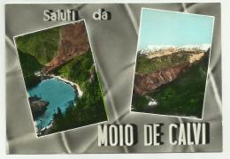 SALUTI DA MOIO DE CALVI  VIAGGIATA FG - Bergamo