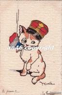 GATTO-GATTI-KAZZE-CHAT-CAT-DIPINTA A MANO-PEINTE A LA MAIN-ILL.CASTELLI-VG 24 MARZO 1916 -OTTIMA CONSERVAZIONE-2 SCAN- - Cats