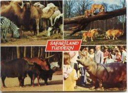 Tüddern Bei Geilenkirchen - Safariland - Geilenkirchen
