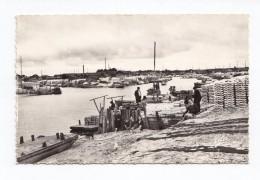 Gujan-Mestras, Le Port Vu De La Jetée, Elcé - L. Chatagneau N° 1353 - Gujan-Mestras