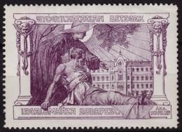 Terminal Illness Hospital / HOSPICE - 1910's HUNGARY - LABEL CINDERELLA VIGNETTE - MNH - Médecine