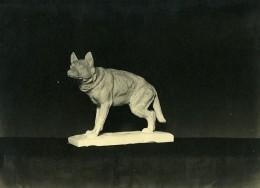 France Paris Art Deco Atelier Cadran Création Anonyme Chien Bronze Ancienne Photo 1930 - Objects
