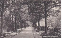 WELLINGBOROUGH - THE WALKS - Northamptonshire