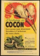 Produire Du Cocon  - Mémoire De La Soie - Murier - Elevage