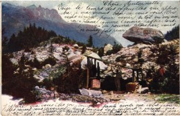 SUISSE - Moraine De La Mer De Glace - Carte Postée - Précurseur - Pub F.L. CAILLER  - Chocolat Au Lait Suisse - Non Classés